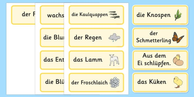 Spring Word Cards German - german, Word cards, Spring, Word Card, flashcard, flashcards, lambs, daffodils, new life, flowers, buds, plants, growth