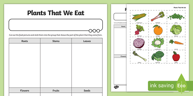 Plants We Eat Cutting And Sticking Worksheet