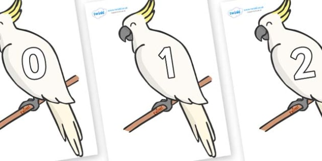 Numbers 0-31 on Cockatoos - 0-31, foundation stage numeracy, Number recognition, Number flashcards, counting, number frieze, Display numbers, number posters