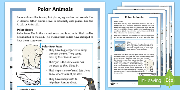 Winter Animals Differentiated Fact File Primary Resources Using the question 'where do i live?', our lesson plan teaches children to recognise familiar places and to identify the types of buildings and land around this is essential for meeting the national curriculum guidelines for geography, which state that, by the time children have finished ks1, they should have. winter animals differentiated fact file