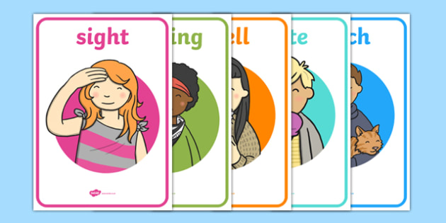 My Senses Display Posters - senses, ourselves, all about me