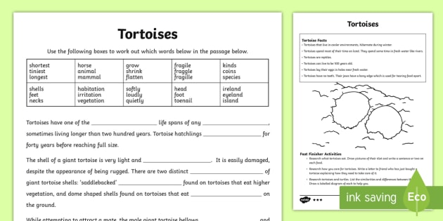 Australian Animals Years 3-6 Tortoise Differentiated Activity Sheets-Australia - Australian Animals, reptiles, cloze passages, activity sheets, word search, research, fast finisher,