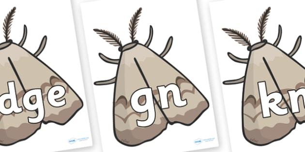 Silent Letters on Insects - Silent Letters, silent letter, letter blend, consonant, consonants, digraph, trigraph, A-Z letters, literacy, alphabet, letters, alternative sounds