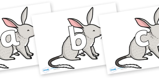 Phoneme Set on Bilby - Phoneme set, phonemes, phoneme, Letters and Sounds, DfES, display, Phase 1, Phase 2, Phase 3, Phase 5, Foundation, Literacy
