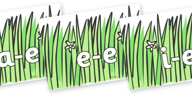 Modifying E Letters on Wavy Grass - Modifying E, letters, modify, Phase 5, Phase five, alternative spellings for phonemes, DfES letters and Sounds