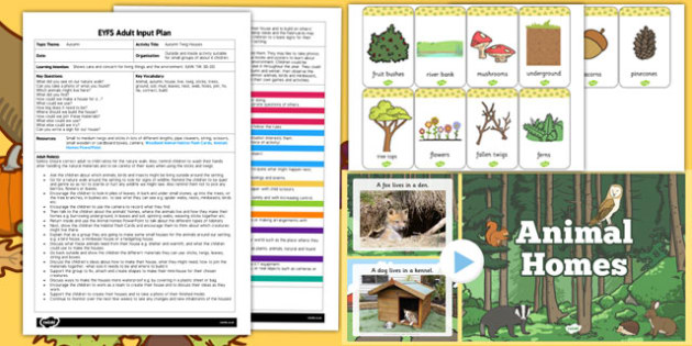 EYFS Autumn Twig Houses Adult Input Plan and Resource Pack