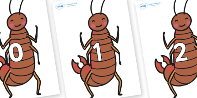 Numbers 0-31 on Earwigs - 0-31, foundation stage numeracy, Number recognition, Number flashcards, counting, number frieze, Display numbers, number posters
