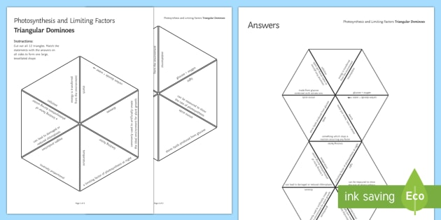 Photosynthesis and Limiting Factors Tarsia Triangular Dominoes