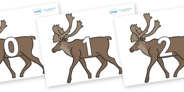Numbers 0-50 on Caribous - 0-50, foundation stage numeracy, Number recognition, Number flashcards, counting, number frieze, Display numbers, number posters