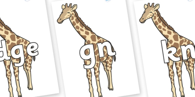 Silent Letters on Giraffe - Silent Letters, silent letter, letter blend, consonant, consonants, digraph, trigraph, A-Z letters, literacy, alphabet, letters, alternative sounds