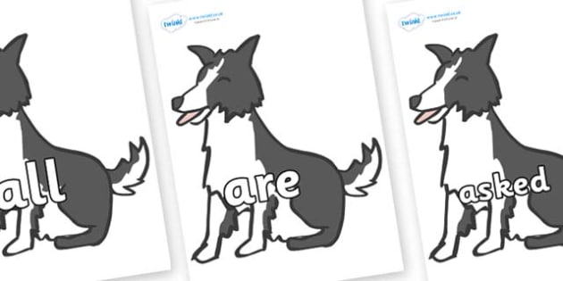 Tricky Words on Sheep Dogs - Tricky words, DfES Letters and Sounds, Letters and sounds, display, words