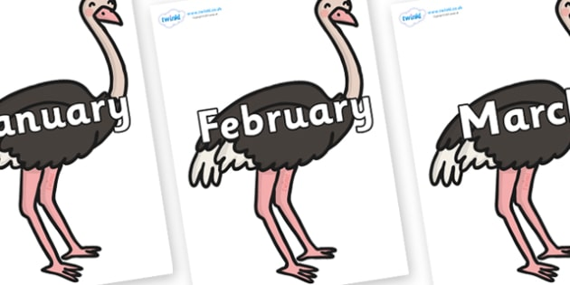 Months of the Year on Ostriches - Months of the Year, Months poster, Months display, display, poster, frieze, Months, month, January, February, March, April, May, June, July, August, September