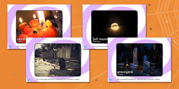 Halloween Display Photos Romanian Translation - romanian, halloween, hallowe'en, display, photos