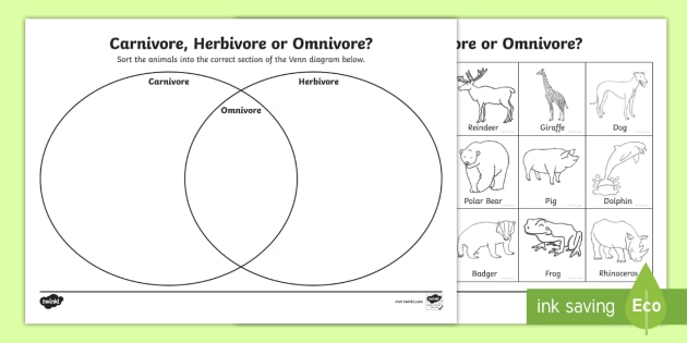 Carnivore or herbivore venn diagram sorting worksheet omnivore carnivore or herbivore venn diagram sorting worksheet ccuart Image collections