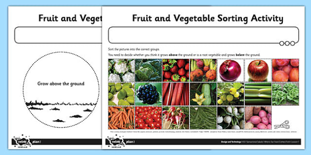 photo regarding Printable Fruit and Vegetables known as Fruit and Vegetable Sorting Worksheet / Worksheet - fruit