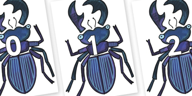 Numbers 0-31 on Stag Beetle to Support Teaching on The Bad Tempered Ladybird - 0-31, foundation stage numeracy, Number recognition, Number flashcards, counting, number frieze, Display numbers, number posters