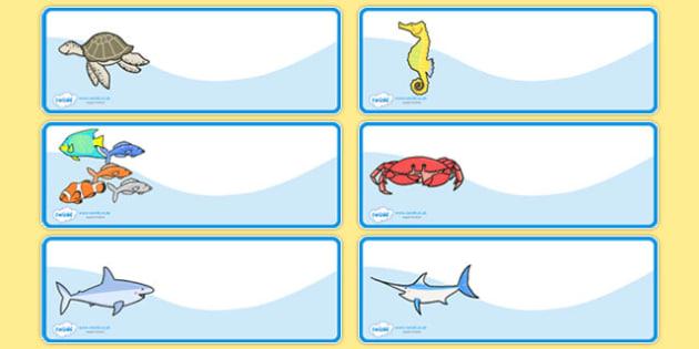 Editable Peg Drawer Labels Sea Creatures French - french, france, francais, sea creatures