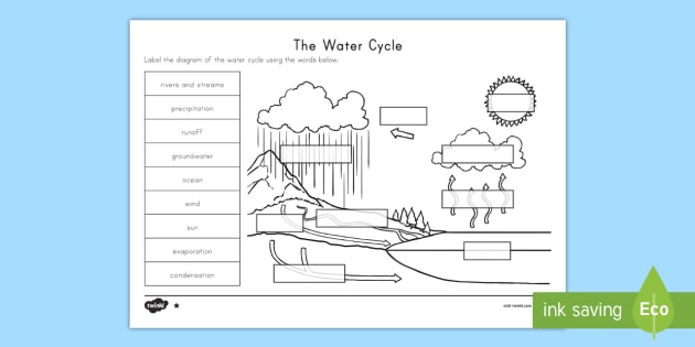 the water cycle differentiated worksheet activity sheets. Black Bedroom Furniture Sets. Home Design Ideas