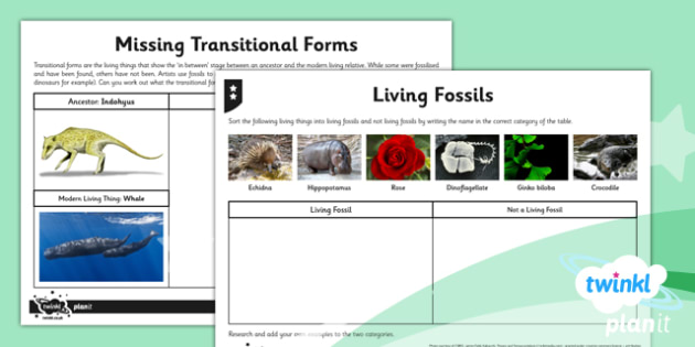 Science: Evolution and Inheritance Year 6 Home Learning Tasks