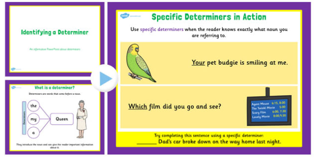 Identifying a Determiner Teaching PowerPoint - powerpoint, slides