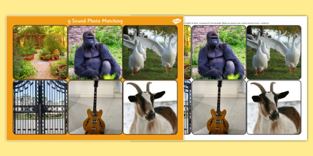 Initial g Sound Photo Matching Board and Cards - sounds, phonics