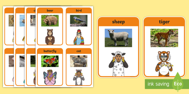 British Sign Language (BSL) Animals Photo Flashcards - sorting