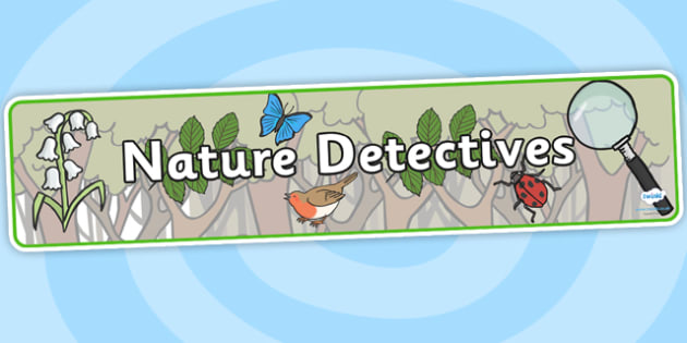 Nature Detectives Topic Display Banner - nature, nature detectives, detective, display banner, detective display banner, nature display banner