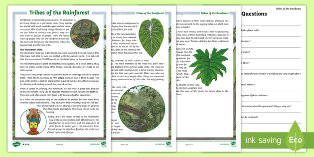 Tribes of the Rainforest Differentiated Reading