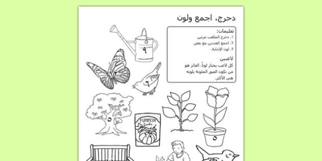 أوراق عمل الحديقة دحرج ولون - الحديقة، أوراق عمل، وسائل تعليمية