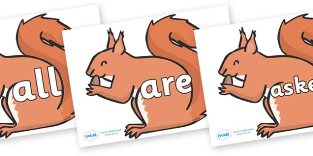 Tricky Words on Red Squirrels - Tricky words, DfES Letters and Sounds, Letters and sounds, display, words
