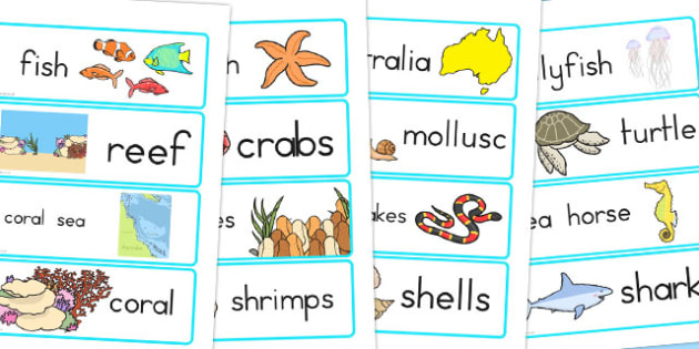 Great Barrier Reef Word Cards - australia, great, barrier, reef