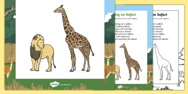 Going on Safari Song