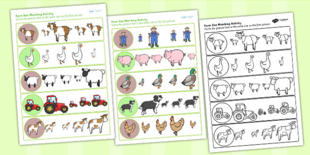 Farm Size Matching Worksheet - farm, size, match, sorting, sizes
