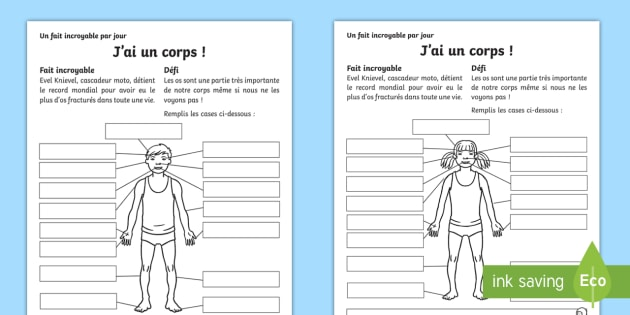 Les Differentes Parties Du Corps Humain