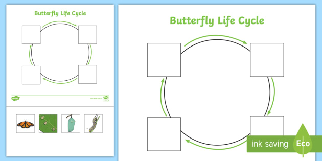 EYFS Butterfly Life Cycle Cut and Stick Activity