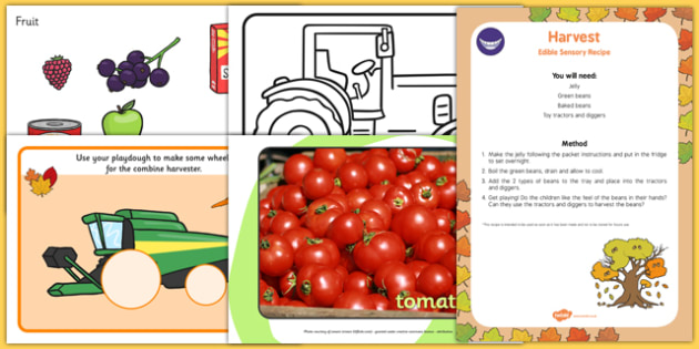 Top 10 Early Years Harvest  Activity Pack