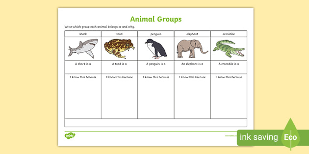 Animal Group Worksheet - Science Resource - Twinkl