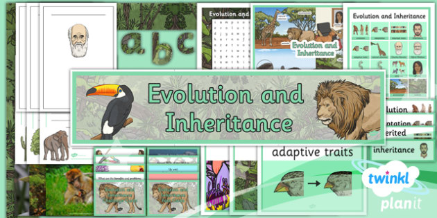 Science: Evolution and Inheritance Year 6 Additional Resources