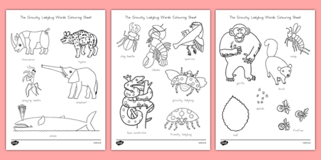 US T T The Grouchy Ladybug Words Colouring Sheet
