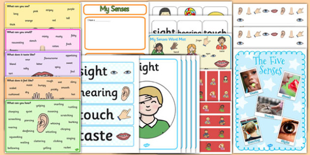 All About Me: My Senses Resource Pack KS1 - all about me, senses