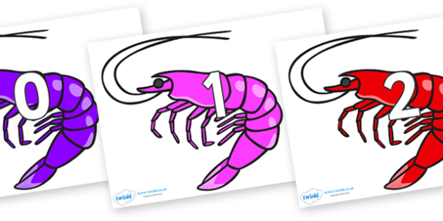 Numbers 0-50 on Shrimps - 0-50, foundation stage numeracy, Number recognition, Number flashcards, counting, number frieze, Display numbers, number posters
