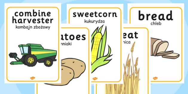 Harvest Display Posters Polish Translation - polish, harvest, display posters, display
