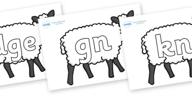 Silent Letters on Sheep - Silent Letters, silent letter, letter blend, consonant, consonants, digraph, trigraph, A-Z letters, literacy, alphabet, letters, alternative sounds
