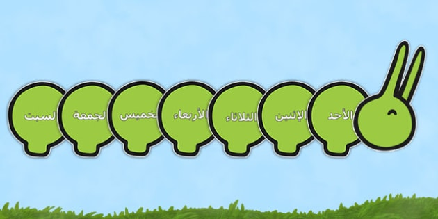Days of the Week on Giant Caterpillar Arabic - arabic, Caterpillar, Weeks poster, Months display, display, poster, frieze, Days of the week