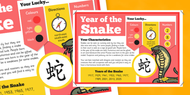 Chinese New Year of the Snake Display Poster - chinese new year, display poster, information, year of the snake