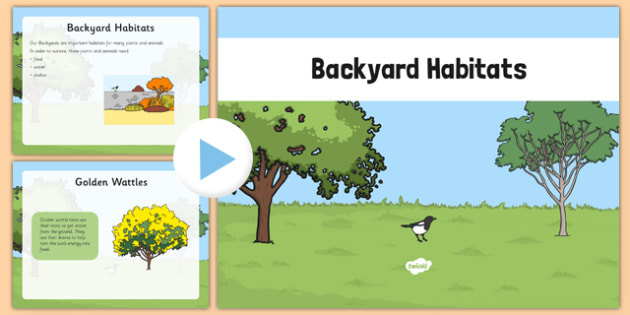 Backyard Habitat PowerPoint - australia, Science, Year 1, Habitats, Australian Curriculum, Backyard, Living, Living Adventure, Good to Grow, Ready Set Grow, Life on Earth, Environment, Living Things, Animals, Plants, Photos, Photographs, PowerPoint