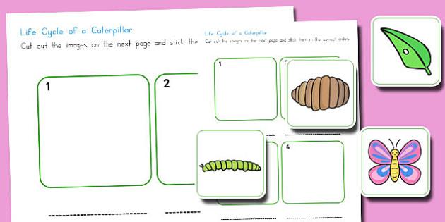 Caterpillar Life Cycle Cut and Stick Worksheet EYFS - australia