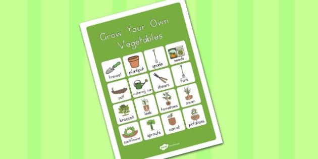 Grow Your Own Vegetables Vocabulary Poster Mat - australia, grow