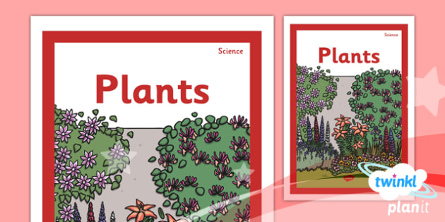 Science: Plants Year 1 Unit Book Cover