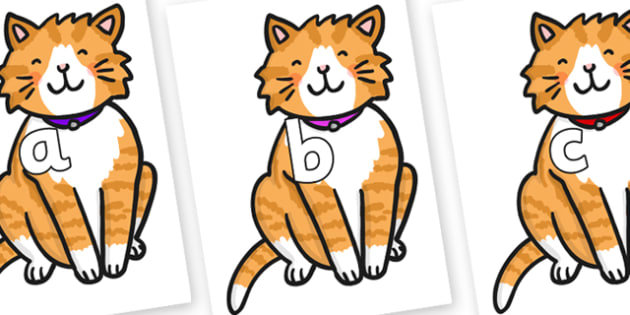 Phase 2 Phonemes on Cat - Phonemes, phoneme, Phase 2, Phase two, Foundation, Literacy, Letters and Sounds, DfES, display